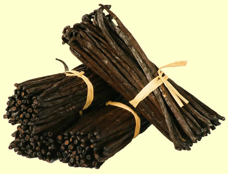 Picture Of Vanilla Beans From Madagascar
